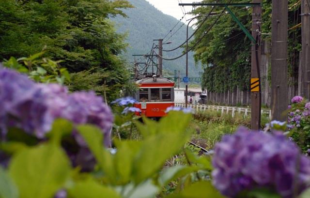 1. กินลมชมวิวไปกับรถไฟสายฮาโกเนะโทซัง