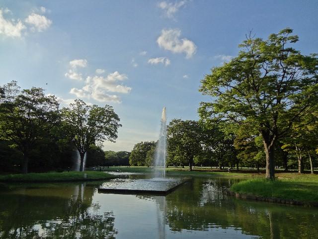 """2. หลีกหนีความวุ่นวายของเมืองหลวงไปกับธรรมชาติอันร่มรื่นของ """"สวนสาธารณะโยโยงิ"""" (Yoyogi Park)"""