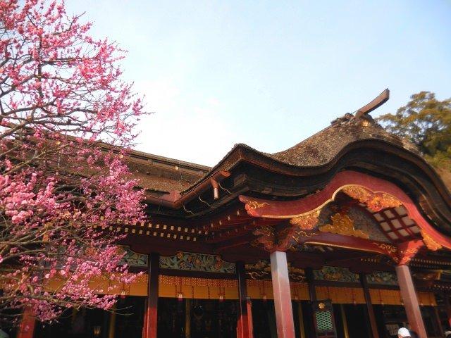 3. สถานที่ท่องเที่ยวที่ขึ้นชื่อของฟุคุโอกะ「ดะซะอิฟุเท็นมันงู」