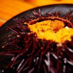 【อันดับอาหารในฮาโกดาเต่】ประกันความอร่อยโดยชาวญี่ปุ่น!